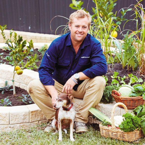 Jason hodges frontrow group talent management Better homes and gardens channel 7
